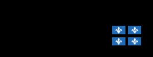 Logo Travail Emploi et Solidarité Sociale Québec